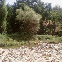 Строительство запруды, Янгиабад