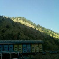Добрый пасечник, Янгиабад