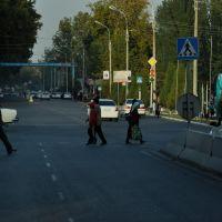 Кибрай, Янгибазар