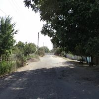 Садовая улица, Янгибазар