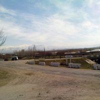 у дачного посёлка в Паркентском районе, Янгибазар
