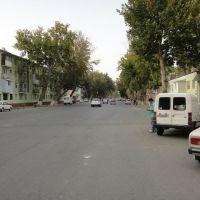 Чернышевского - улица, где я родился., Дангара