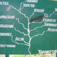 Pum, map, Кува