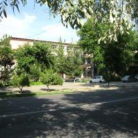 Областная библиотека, Фергана