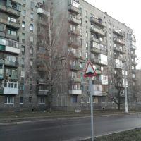 Берёзка (Birch), Авдеевка