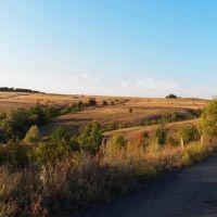 Дорога с Андреевки на Грабовскую плотину, Андреевка