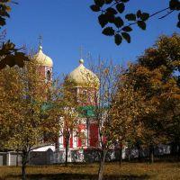 в парке, Артемовск