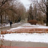 в парке, памятник, Артемовск