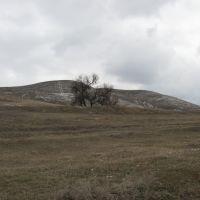 Меловые горы, Беленькое