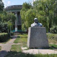 Shevchenko, Белицкое