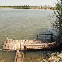 Рыбное место, Белицкое