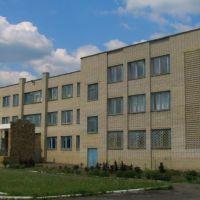 гимназия, Великая Новоселка