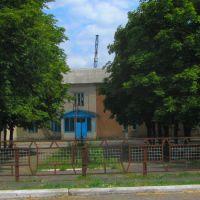 школа, Великая Новоселка