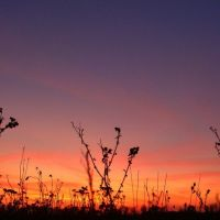 Закат, Волноваха