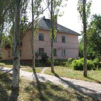 Дом, Гольмовский