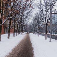 Горловка зимой, Горловка