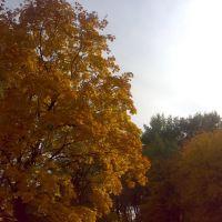 Парк ш.Торецкой, Дзержинск