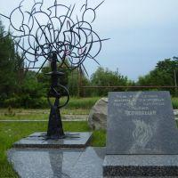 """памятник """"Чернобыльцам"""", Димитров"""