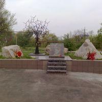 жертвам Чернобыля, Димитров