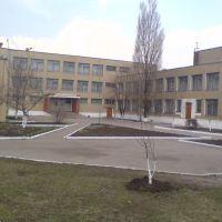 Гимназия 2008, Димитров