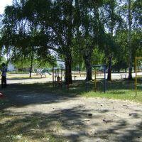В летнем парке, Димитров