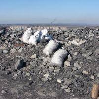 Добыча собирателей угля, Доброполье