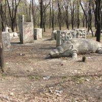 Парк, Доброполье
