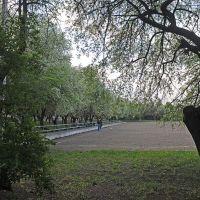Тренировочное поле, Докучаевск