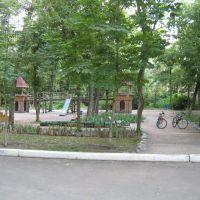 Парк в Докучаевске.The park in Dokuchaevsk., Докучаевск