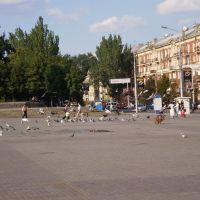 Голуби, Донецк