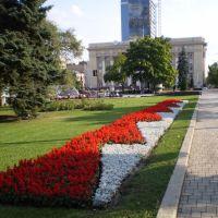 Красные и белые, Донецк