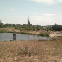 Ставок 4.08.2012, Донецкая