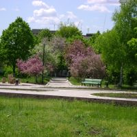 park, Донское