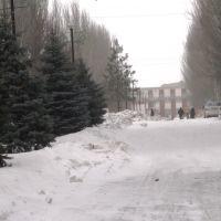Улица Ленина, Донское