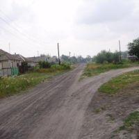 ул. Пушкина, Дробышево