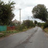 дорога, Дробышево