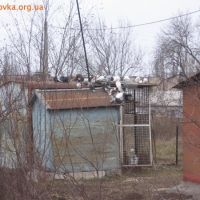 Домик для голубей, во дворе дома 7 по ул. Петлина., Дружковка