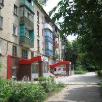 Дом №33 по ул. Ленина, Дружковка