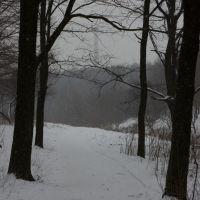 Winter, Жданов