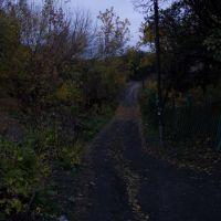 ravine, Жданов