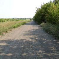 Дорога в Желанное, Желанное