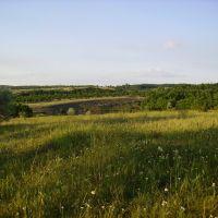 Лето, степь. Недалеко от пос. Зуевка. (Summer, steppe. Near a Zuevka settlement.), Зуевка