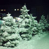 Улица Ляшенко, Карло-Либкнехтовск
