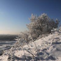 Вид с террикона, Карло-Либкнехтовск