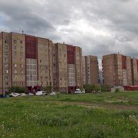 Высоцкого нечетная строна, Карло-Либкнехтовск