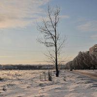 Текстильщик зимой, Карло-Либкнехтовск