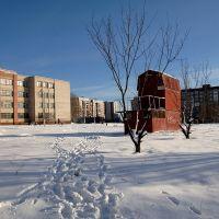 Голубятня у 112-й школы, Карло-Либкнехтовск