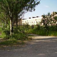 old plant, Карло-Либкнехтовск