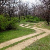 извилистая дорога, Карло-Марксово