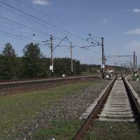 западная горловина ст.Ямполь, Кировск